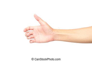Hand holding something on white background