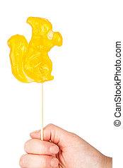 Hand holding squirrel shape lollipop