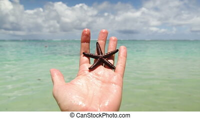 Hand holding starfish with beach in background