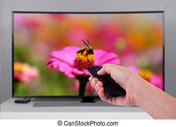 Hand holding TV remote control with a television and nature...