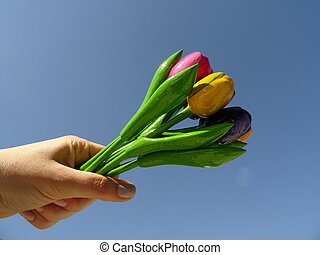 Hand Holding Up a Bouquet of Colorful Wooden Tulips agaist the background of the Blue sky