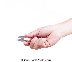 Hand holding Yarn scissors