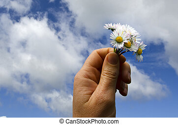 Hand holds flowers