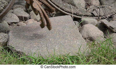 hand horse shoe stone