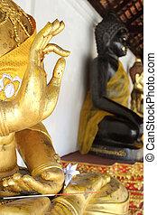 ??Hand image of buddha