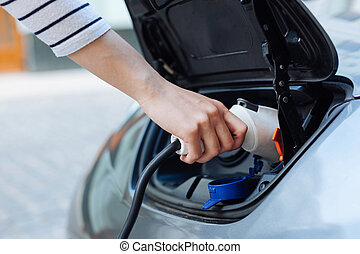 Hand in a striped jersey holding a charger for e-car