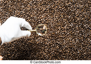 Hand in a white glove with a magnifying glass on the background of coffee beans