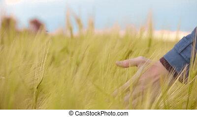 """Hand in field, man walking on native land, patriotic feelings to motherland"""