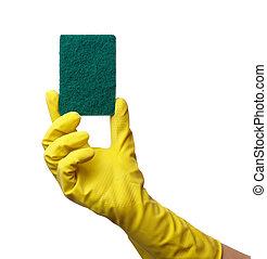 Hand in glove holding washing sponge
