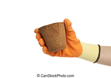 Hand in glove holds pot, isolated on white background