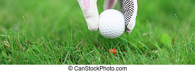 Hand in golf glove secures the ball to hit.