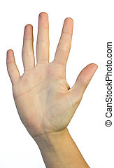 Hand in the air showing 5 fingers