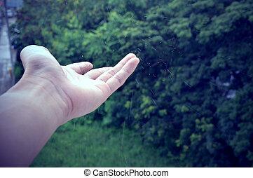 Hand in the rainy season.