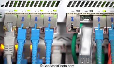 Hand inserts the cable into internet hub - Male hand inserts...