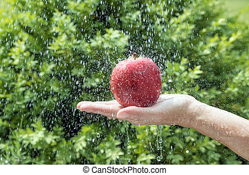 Hand is holding a red apple in the water stream