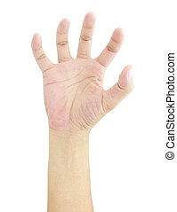 hand isolated on a white background