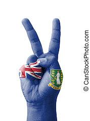 Hand making the V sign, British Virgin Islands flag painted