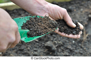 compost for garden - hand man holding a gardening tool full...