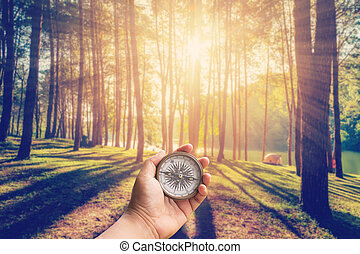 Hand man holding compass at larch forest with sunlight and...