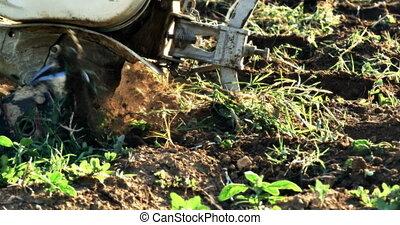 hand mini tractor 4k