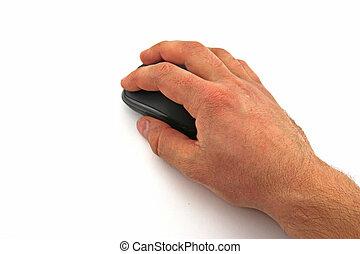 hand, mit, computermaus, weiß, hintergrund