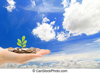 Hand ,money and green sapling