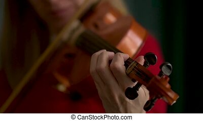 Hand of a female violinist on the fingerboard of a violin takes a chord. Close up view.