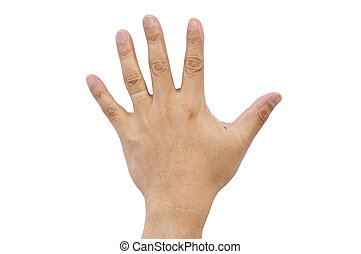 Hand of a man on white background