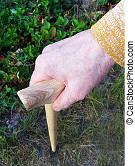 hand of a old woman with walking stick