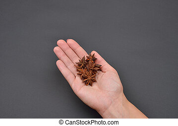 Hand of a woman holding a pile of anise isolated on black background. Spice. Taste. Cooking. Food and beverage flavoring