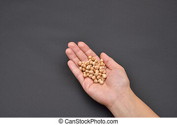 Hand of a woman holding a pile of chickpeas isolated on black background. Meal preparation. Cooking. Food