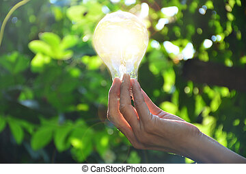 Hand of person holding light bulb for idea or success or solar energy