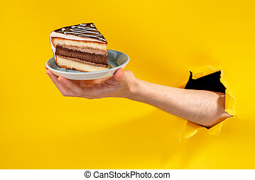 Hand offering a piece of chocolate cake