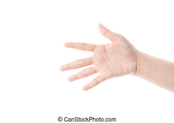 hand on the white background