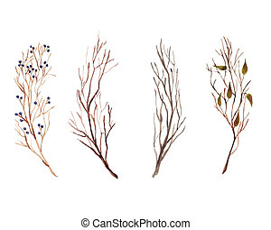 Hand painted watercolor Set with beautiful autumn branches, leaves and berries isolated on white background.