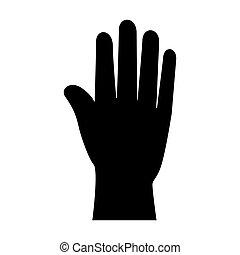 hand palm human