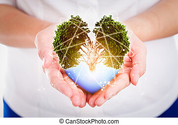 Hand people save the earth protect environmental concept.