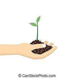 hand, plant., vasthouden, jonge