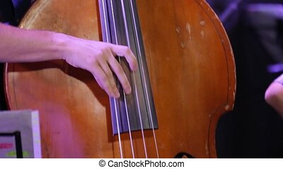 Hand playing double bass at a jazz concert closeup