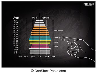 Hand Pointing 2016-2020 Population Pyramids Graphs with 4 Generation