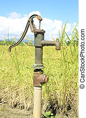Hand pump leading to an artesian well. Pumping water for watering the rice.