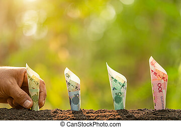 Chinese banknote in soil with green nature blur background. ...