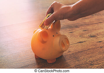 Hand putting one dollar into piggy bank