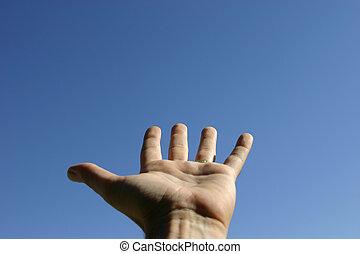 Hand Reaching - Hand reaching toward sky