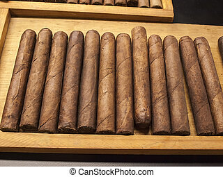 Hand rolled Cuban cigars