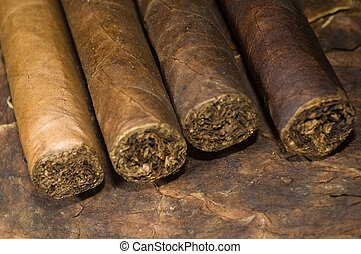 hand rolled nicaraguan cigars on tobacco leaf - variety hand...