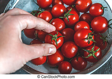 hand selects and shows whole fresh cherry tomatoes in a...