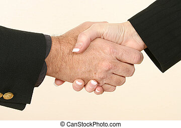 Hand Shake - Man and woman shaking hands.