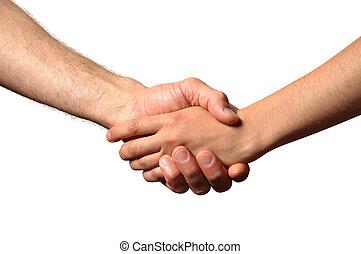 Hand Shake - shake