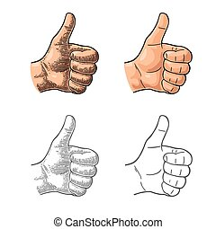 Hand showing symbol Like. Making thumb up gesture.